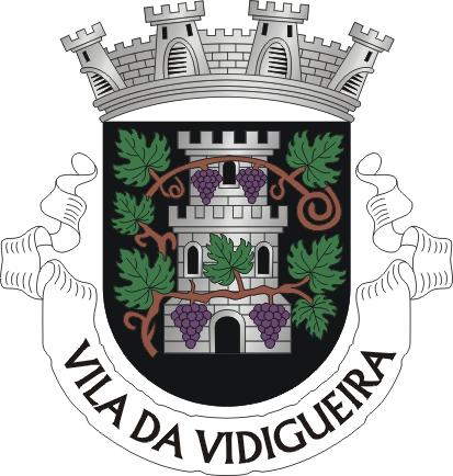 VDG.png